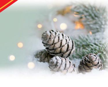 Natale, Capodanno, Epifania