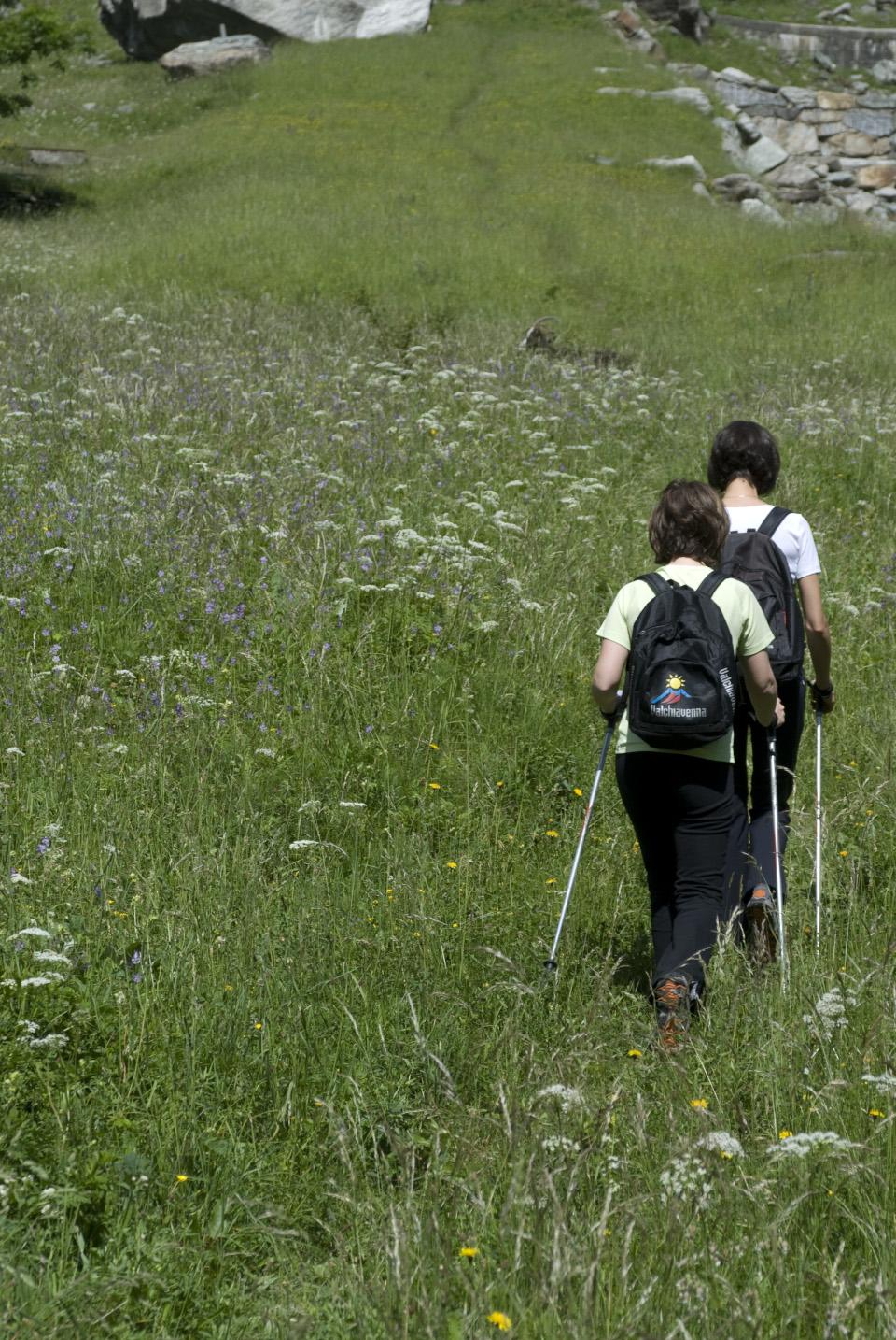 Nordic walking a giugno