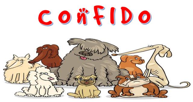 Confido 09-8